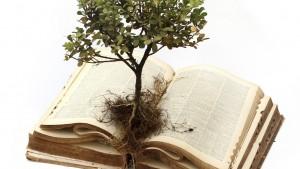 Grow-bible_tree