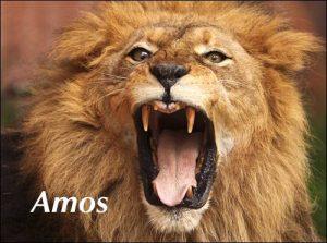 amos-header-photo-500x372